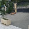 Fox et Stella - 04/2011