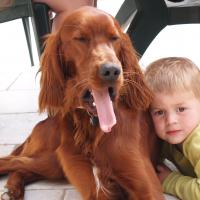 Fox, Stella et les enfants - 04/2011
