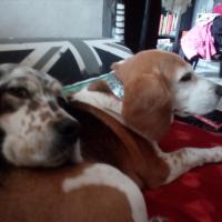 Les deux amies !!