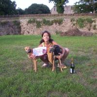 Photo de profil de Alceste
