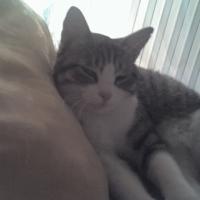 Photo de profil de Adeline