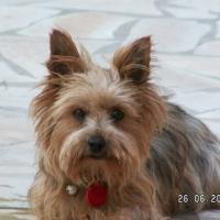 Photo de profil de Lara