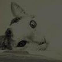 Photo de profil de Maki