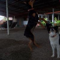Photo de profil de Benjo