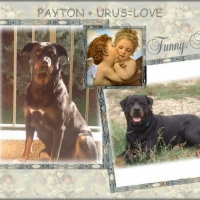 Photo de profil de Payton