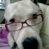 Photo de profil de Fanny