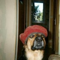 Photo de profil de Malcom