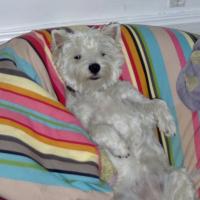 Photo de profil de Chloé