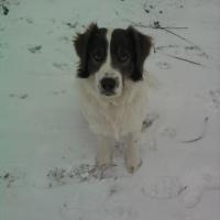 Photo de profil de Titus