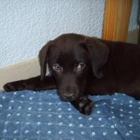 Photo de profil de Doly