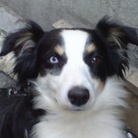 Photo de profil de Aby