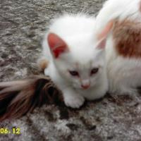 Photo de profil de .