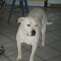 Photo de profil de Oundja