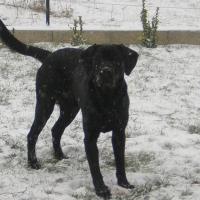 Photo de profil de Calypso