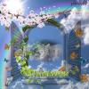 Photo de Enza ou enzo