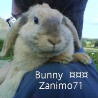 Photo de profil de Bunny