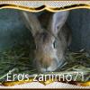 Photo de Éros