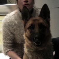 Photo de profil de Siska