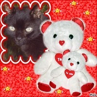 Photo de profil de Wolfi
