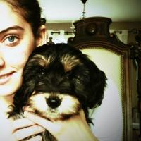 Photo de profil de Gipsy