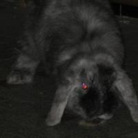 Photo de profil de Woolwich