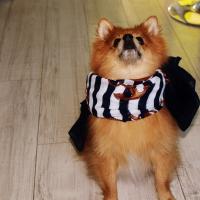 Photo de profil de Eycko