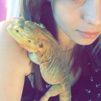 Photo de profil de Zelda