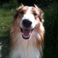 Photo de profil de Happy
