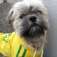 Photo de profil de bouba