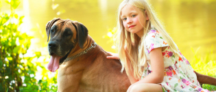 Illustration : Connaître son chien