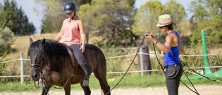 Illustration : Le travail au sol et monté du cheval