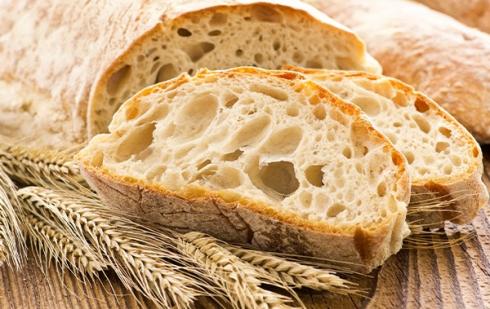 """Illustration : """"Peut-on donner du pain à manger à son chien ?"""""""