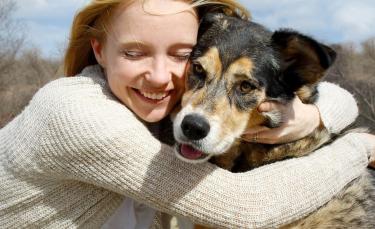 """Illustration : """"Adopter un chien auprès d'un particulier"""""""
