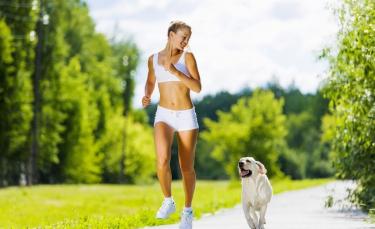 """Illustration : """"Pratiquer une activité physique avec son chien"""""""
