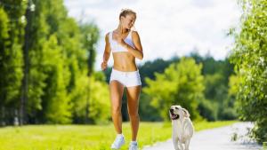 Illustration : Pratiquer une activité physique avec son chien