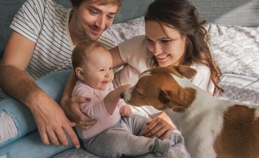 """Illustration : """"Préparer son chien à l'arrivée d'un nouveau-né"""""""