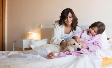 "Illustration : ""Dormir avec son chien"""