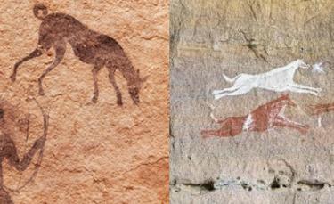 """Illustration : """"Les premiers chiens de chasse dateraient de 9000 ans"""""""