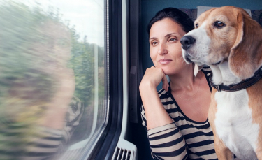 """Illustration : """"Voyager avec son chien en train"""""""