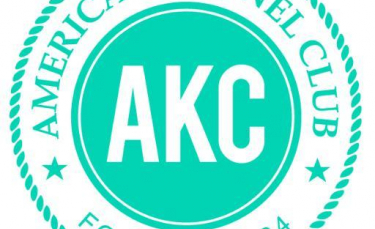 "Illustration : ""L'AKC : American Kennel Club"""