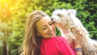Illustration : Les conditions requises pour que votre chien soit assuré