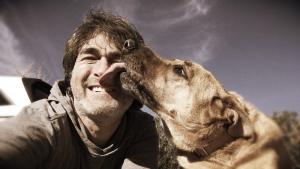 Illustration : 5 raisons qui expliquent pourquoi les chiens lèchent leur maître
