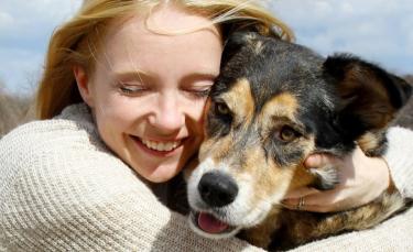 """Illustration : """"La garantie assistance chien"""""""