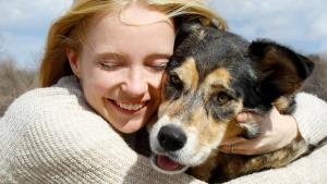 Illustration : La garantie assistance chien
