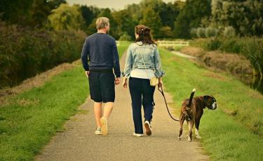 """Illustration : """"Woog, une application pour des promenades canines plus fun"""""""