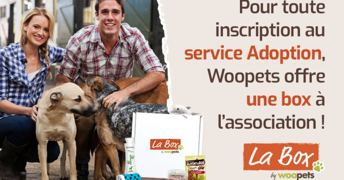Des Box Surprises Offertes Aux Associations Inscrivant Leurs Animaux A Adopter Chez Woopets
