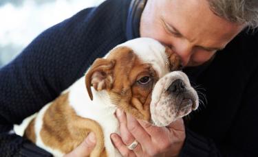 """Illustration : """"Comment faire garder ses animaux par un pet-sitter ?"""""""