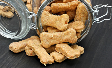 """Illustration : """"Idées de recettes de friandises et biscuits pour chien"""""""