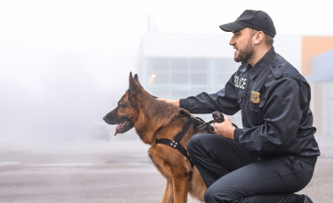 """Illustration : """"Maître chien"""""""