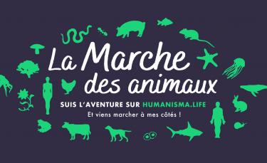 """Illustration : """"Pour faire évoluer le droit animal en France, elle parcourt 2500 km à pied """""""